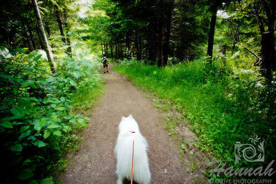 An American Eskimo dog and a boy on a trail at L.L. Stub Stewart State Park in Oregon  © Copyright Hannah Pastrana Prieto