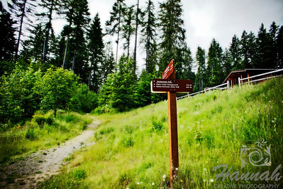 Trail at L.L. Stub Stewart State Park in Oregon  © Copyright Hannah Pastrana Prieto