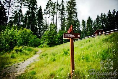 Trail at L.L. Stub Stewart State Park in Oregon  © Copyright Hannah Pastrana Prieto