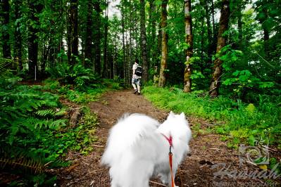 An American Eskimo dog and a boy on a trail at L.L. Stub Stewart State Park in Oregon  © Copyright Hannah Pastrana Prieto