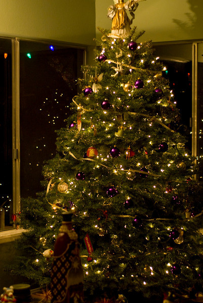 I haven't put up a Christmas tree in a few years, since I usually spend Christmas in Colorado. However, I realized I missed my ornaments, the aroma & ambiance of a tree, So I put one up and I'm glad I did.