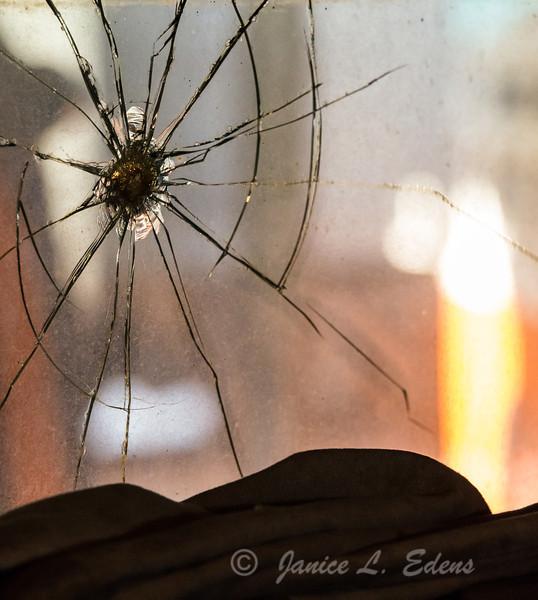 """Spider Crack"""
