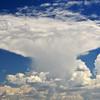 Natural Mushroom Cloud