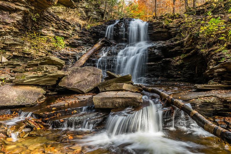 Fall:  F. L. Ricketts Falls