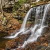 Fall:  B. Reynolds Falls