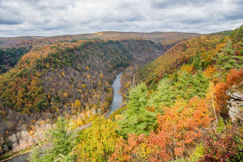 Autumn in Pine Greek Gorge