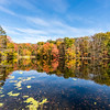 Autumn Color Reflections