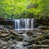 Summer:  Oneida Falls