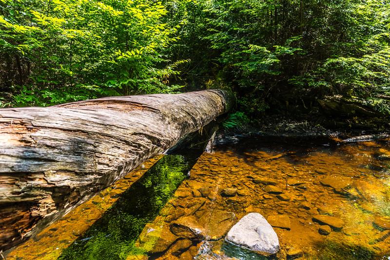Cedar & Creek Water