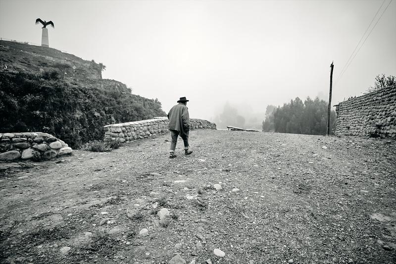 Man And Condor