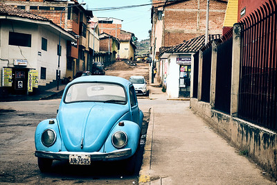 Bug In Cusco