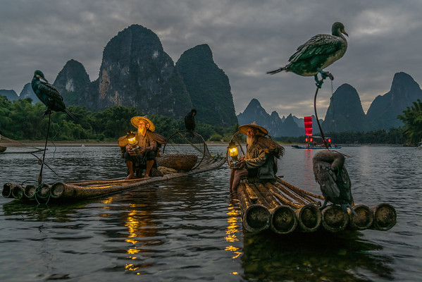 Comorant Fishermen - Guilin, China