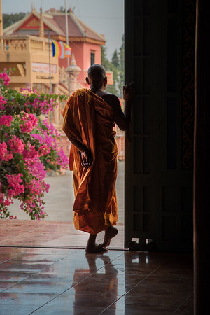 Buddhist Monk, Southeast Asia