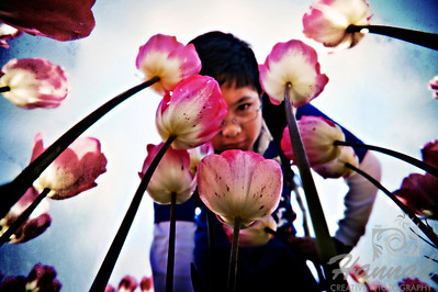 A Boy Looking Down at the Pink Tulips  © Copyright Hannah Pastrana Prieto