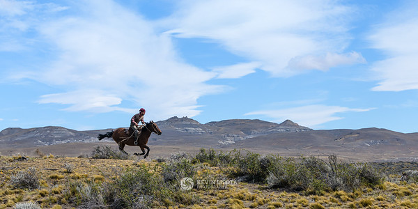 Gaucho gallops across the Patagonia plains on horseback