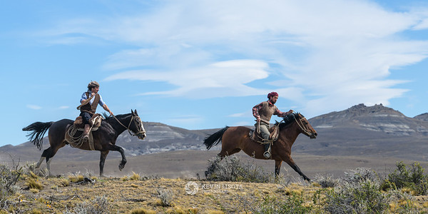 Gauchos gallop across the Patagonia plains on horseback