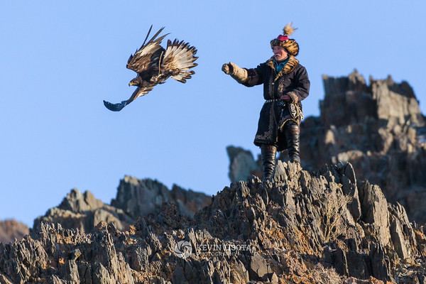 Turganbek releases his golden eagle