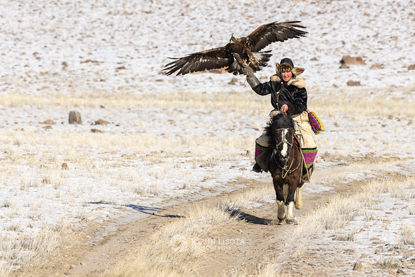 Buybelot rides with his golden eagle