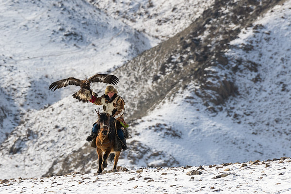 Chinggis rides with his golden eagle