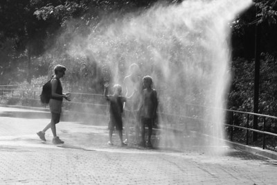 Cooling off at the Zoo