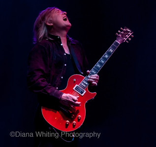 Kim Simmonds Savoy Brown