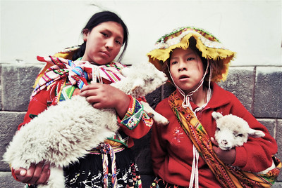 Cusco girls with their lambs