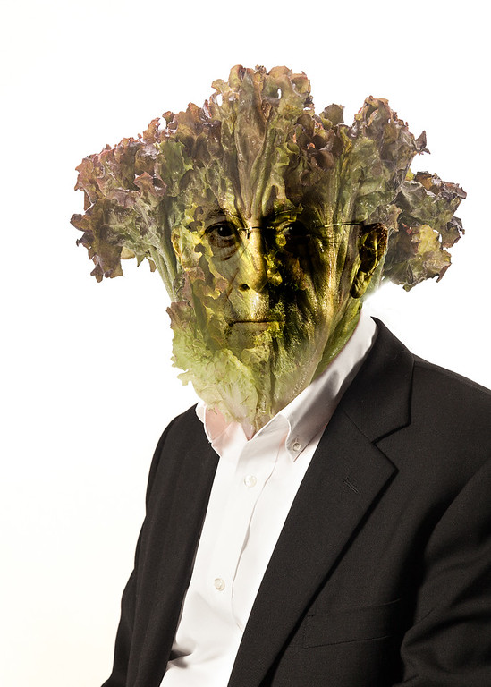 Portrait of the Artist as a Young Lettuce