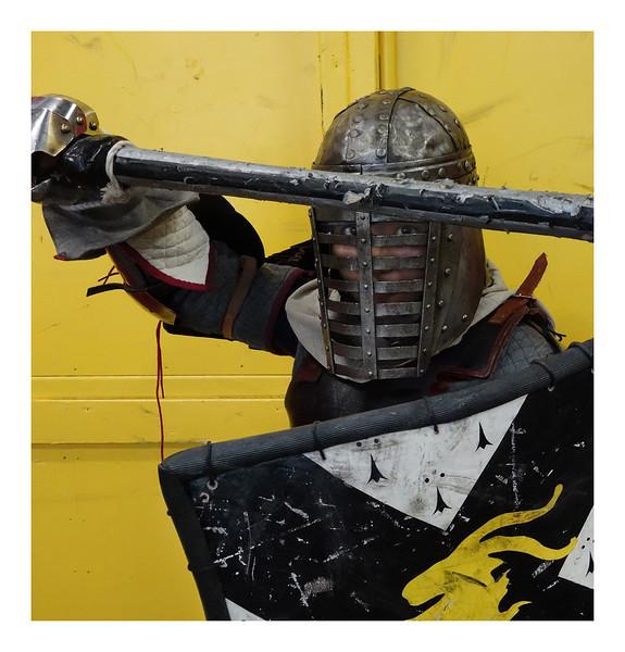 Lady Agathe in Full Armor