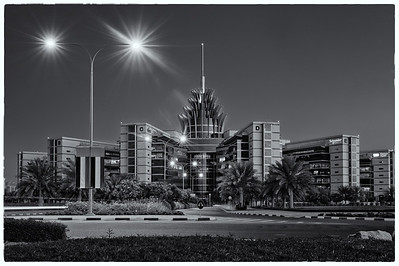2012 Pic(k) of the week 5: Pineapple building