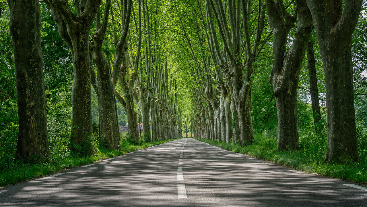 2013 Pic(k) of the week 22: Scenic drive through the Provence, France