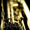 18% grey-Saxaphone-By Okphotography-0009