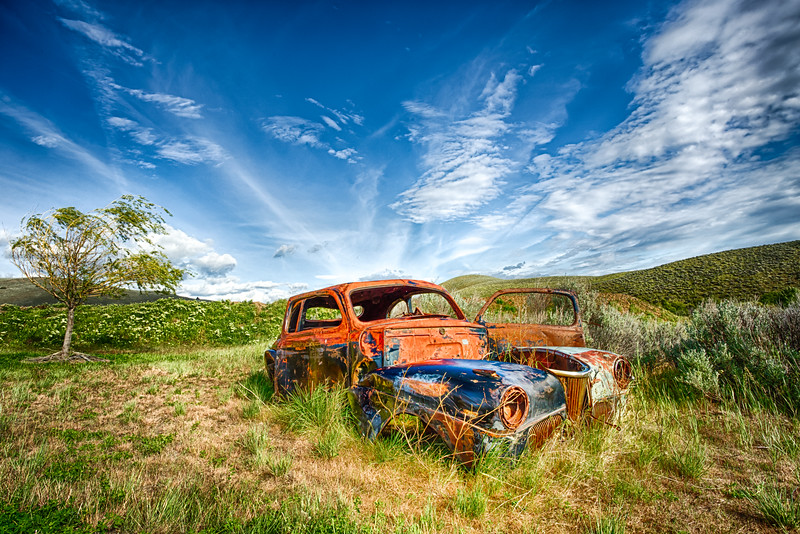 41 Ford In The Field