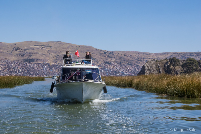 In the afternoon of our extra day in Puno, I felt well enough to join a local boat tour to the Uros Islands, where  people live in reed huts on floating reed islands on Lake Titicaca. Evelation here is over 3,800 m so we felt the altitude.