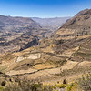 We stopped on the way back for views in the Colca Valley, where we could see the extensive terraces and the channels of the irrigation systems. Hard to believe anything would grow there with so little rain, but there is a river in the valley below.