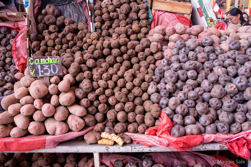 There are over 4000 varieties of potato if you can believe that! The Inca first cultivated potatoes in Peru and Bolivia between 8000-5000 BC.