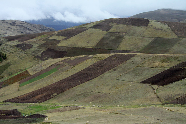 Cultivated slopes along the Andes at cloud level - here at near 13,800 ft. (4,200 m) - Huanavelica department.