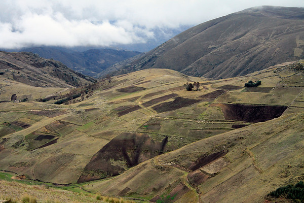 Along the cultivated slopes of the Andes Mountains - Huancavelica department..