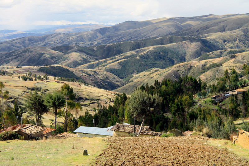 From the tilled slope - to the patches of forests mixed with grasslands - Huancayo province - Junin department.