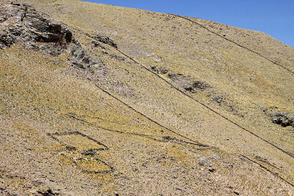 Rock constructed livestock corrals (mainly alpaca and llama) and fences constructed among the steep and rocky slope of the Western Andes Range, cloaked with tussock grass during the late spring season - Chucuito province - Puno department.