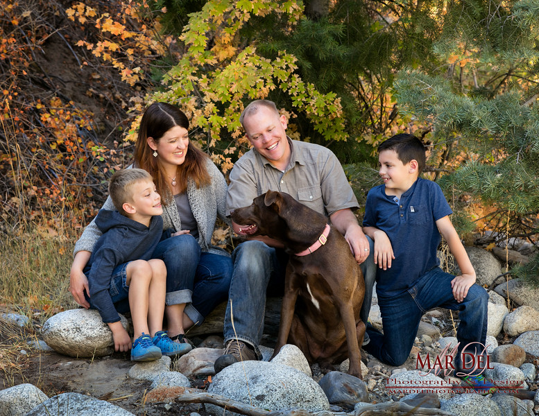 Dogs with family