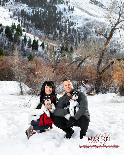 Winter family Portrait with Dogs