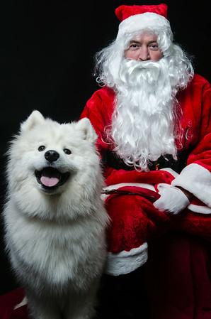 Santa and Samoyed