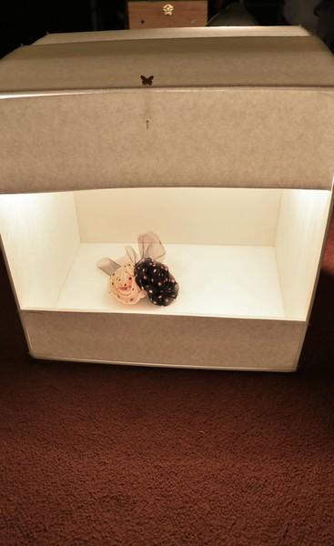 LightBox_0020