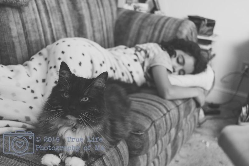 Pets & Animals - J & M 01