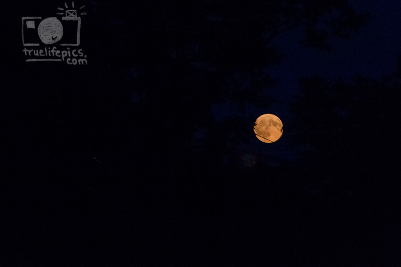 September 5, 2017 Full Moon (3)