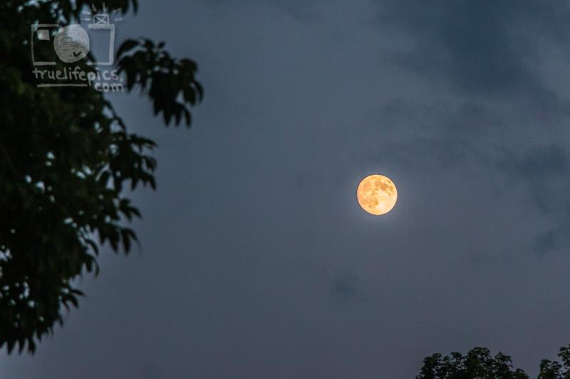 August 5, 2017 Moon (1)