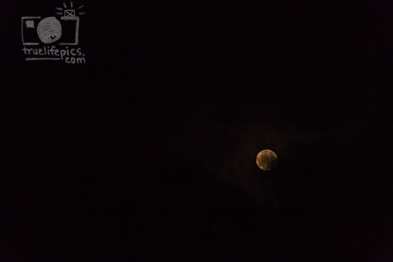 September 5, 2017 Full Moon (19)