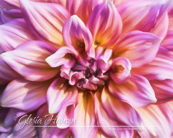 Flower_DSC1836-16x20