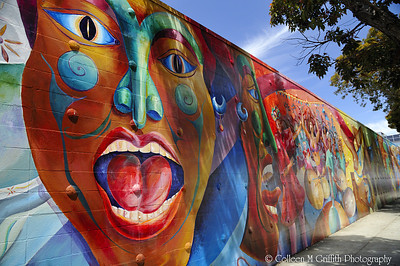 Mission District Wall Art  © 2010 Colleen M. Griffith. All Rights Reserved.  This material may not be published, broadcast, rewritten, or modified in any way without permission. San Francisco CA Friend me on Facebook