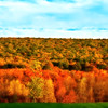 """<center><em><h2>""""Mountain Of Color""""</h2></em></center> Good afternoon all, I'm having a decent day today without the same pain level as yesterdays miserable start. I wanted to thank you all for your well wishes & let you know I'm feeling much better today.  I shot this Mountainside just around the corner from my house while sitting in my car in the traffic lane LOL. It sits behind some homes along one of our main access roads and just 200' or so from the Stud Farm that I photograph all the time. I was able to shoot in between 2 homes to get this capture, so yes this is actually someones BACK YARD! Could you imagine waking up to this beautiful site every morning? On the top of this mountain lies part of the Appalachian Trail which I have yet to walk in the 12 years I've lived here, but one of these days.  Post consisted of a slight color balance in the sky and then I added a soft focus to the trees to blend & soften the colors a bit for a smooth look and that's about it. Total time spent on this one was about 10 min.  Have a wonderful day everyone ! ~Bill Pador~"""